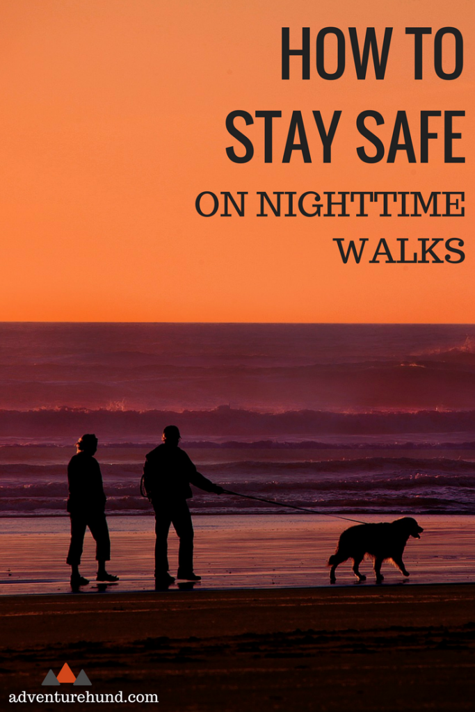 Keep yourself and your dog safe during those nighttime walks with some clever accessories.