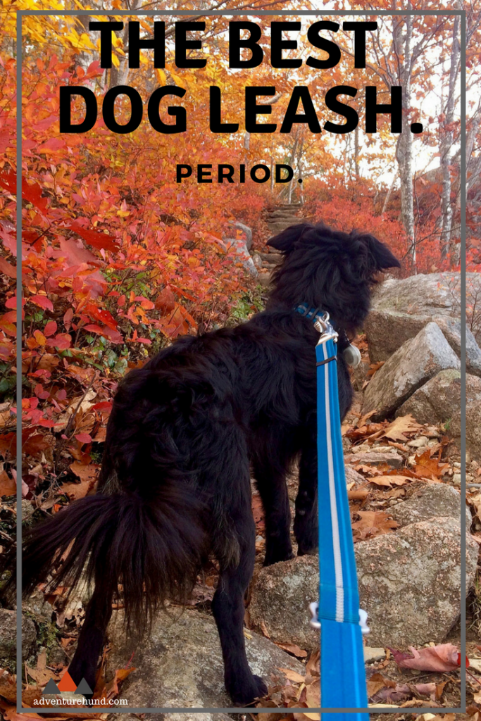 A do-it-all dog leash for your every need. If you're only going to buy one, get this one!